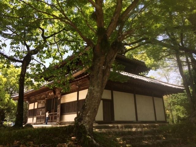 観世音寺1.JPG