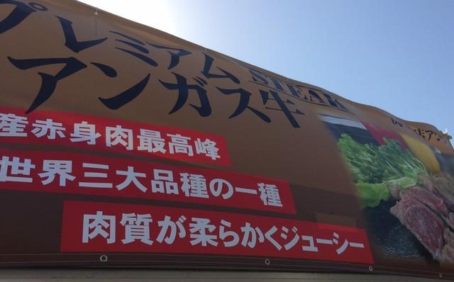 IMG_8441 (2).JPG